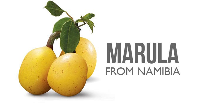 marula oil from Namibia