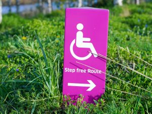 business ideas people with disability